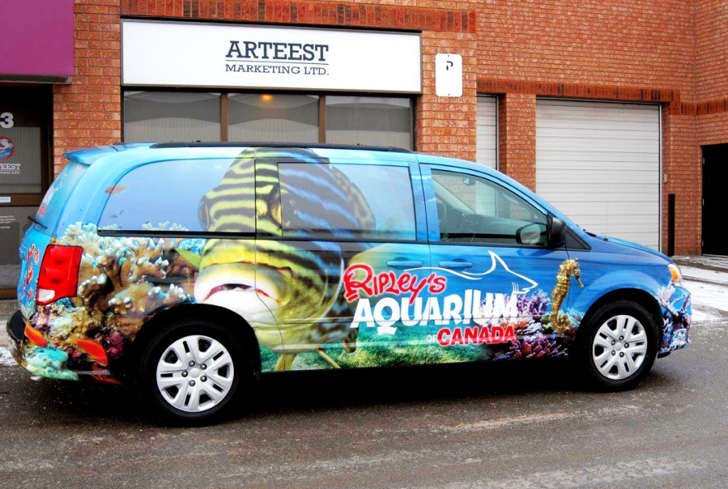 Ripley's-Aquarium-Car