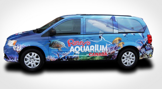 Ripley's Aquarium Vehicle Graphic